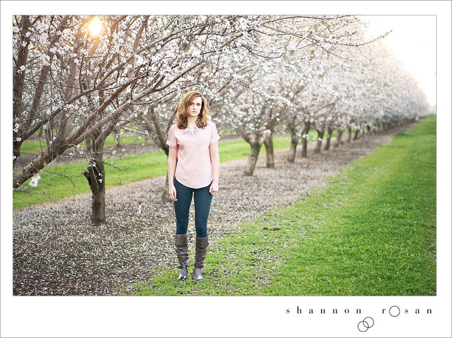 Kelsey 7