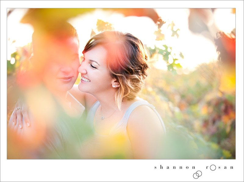 wine and roses engagement lodi 8
