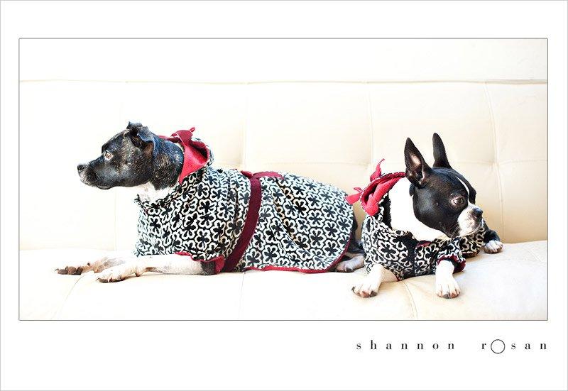 Olive & Sammie's Christmas Dresses