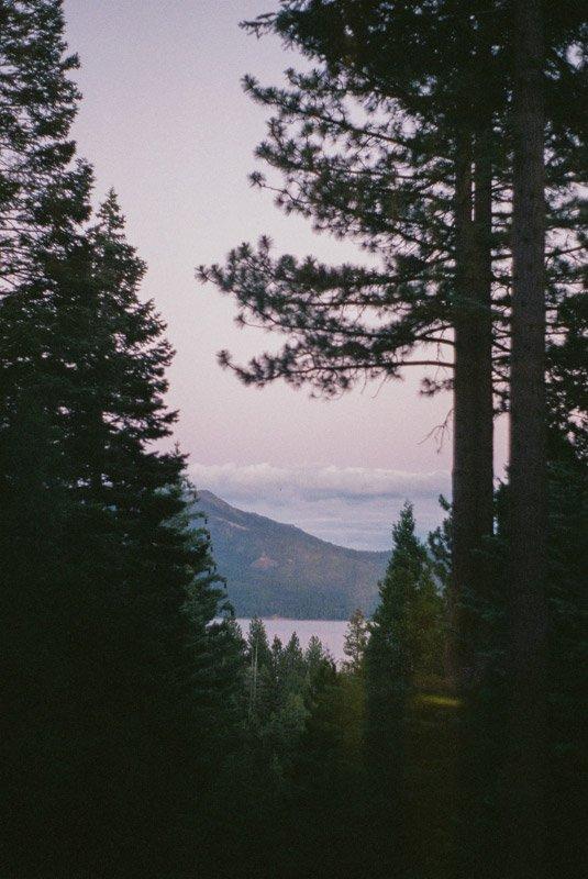 View of Lake Almanor, Ca through pine trees at sunset
