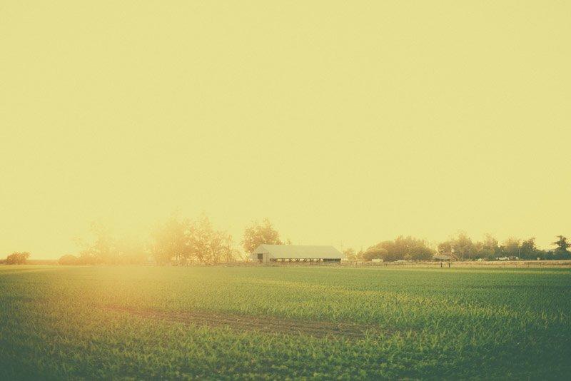 Barn in Willows, Ca