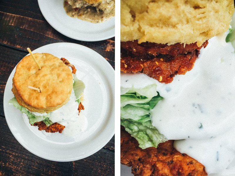 Pine State biscuits - Shannon Rosan Photography