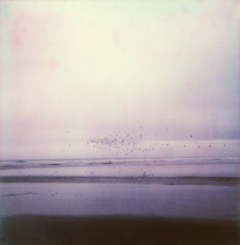 Polaroid Travel Photos, Shannon Rosan Photography